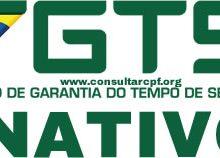FGTS inativo 2017 (imagem reprodução)